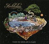 Antibalas : Where The Gods Are In Peace | Amayo, Duke. Compositeur