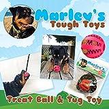 Super resistente, morso resistente, denti e gengive pulizia, stimolante, Treat Dispensing Dog Chew Toy. Realizzato in gomma resistente, sicuro, non tossici. Viene fornito con una staccabile corda intrecciata a fare un Tug giocattolo interattivo per il vostro cane o cucciolo. Inoltre ha un profumo di menta per facilitare l' alito cattivo: approvato dalla Marley il Rottweiler.