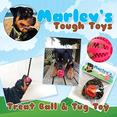 Super rígida, Bite Resistente, dientes y encías de limpieza, estimulante, treat dispensador perro Chew juguete. Fabricado en resistente, seguro, no tóxico de goma. Viene con una cuerda a hacer un tira juguete interactivo desmontable para su perro o cachorro. También tiene un aroma de menta para ayudar con mal aliento: Como aprobado por Marley el Rottweiler