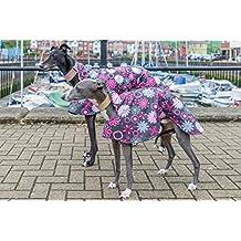 Edición limitada Beautiful Galgo, Whippet impermeable, con forro abrigo de perro y casa