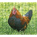 Kerbl Unisex's TR-CRL0765 Poultry Netting Non-electrifiable Single Prong, Clear, 112 cm x 50 m 6