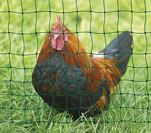 Kerbl Unisex's TR-CRL0765 Poultry Netting Non-electrifiable Single Prong, Clear, 112 cm x 50 m 2