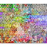 murando - Fototapete Steinwand 400x280 cm - Vlies Tapete - Moderne Wanddeko - Design Tapete - Wandtapete - Wand Dekoration - Steine Stein Steinwand Ziegel bunt f-C-0065-a-a