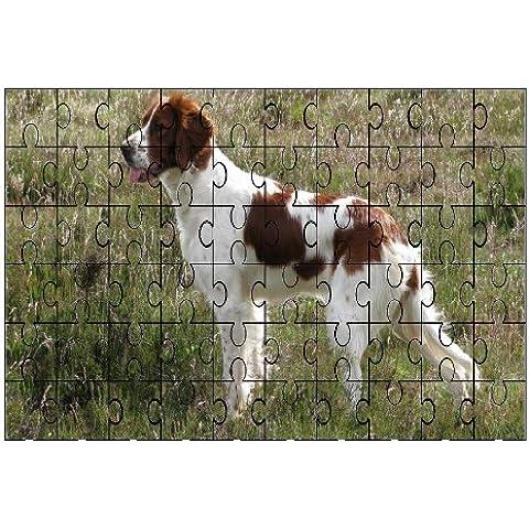Rosso e Bianco Cane Setter 60piece Puzzle 202