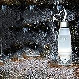 avelaiva H2O sano botella de agua con infusor de frutas, fruta cámara y integrado exprimidor–exprimidor taza, 4colores botellas para 22oz agua, jugo, té helado, limonada Soda, deportes, bebidas, etc., blanco