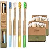 Spazzolino da denti di bamboo ecologico e biodegradabile | Manico arrotondato senza plastica | Setole medio dure senza BPA |