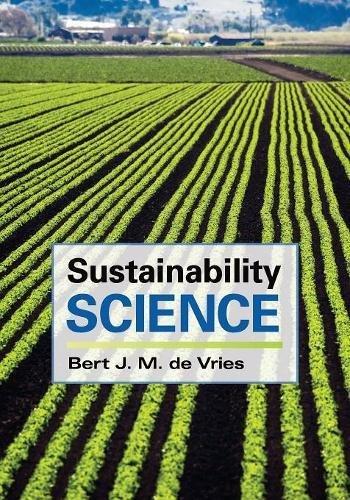 Sustainability Science Paperback por de Vries