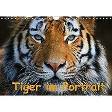 Tiger im Portrait (Wandkalender immerwährend DIN A4 quer): Portrait's von der größten Katze - dem Tiger. (Monatskalender, 14 Seiten) (CALVENDO Tiere) [Kalender] [Sep 28, 2013] Krone, Elke