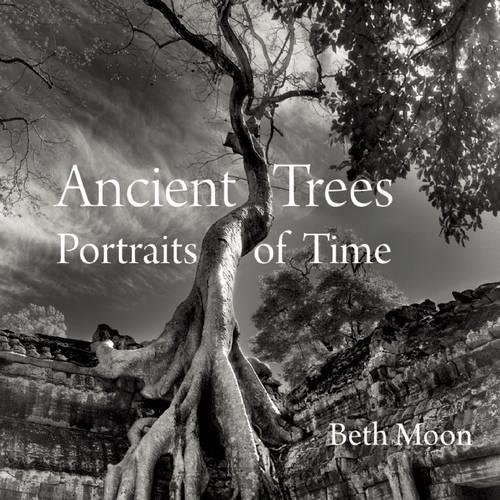 Ancient Trees: Portraits of Time por Beth Moon