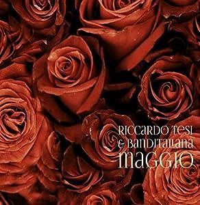 Riccardo Tesi In concert