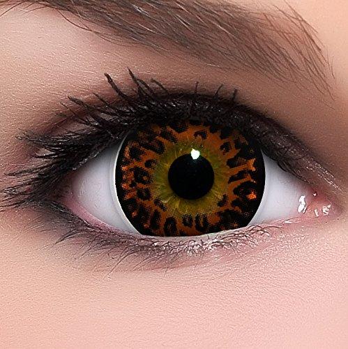 Circle Lenses braune 'Wild Brown' ohne Stärke + Kombilösung + Behälter Big Eyes 15mm farbige Kontaktlinsen (Wilde Kontaktlinsen)