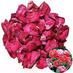 TooGet Getrocknete natürliche rosenblüten organisch getrocknete Blumen Großhandel am besten für Hochzeit Dekoration, Bad, Body Wash, Fuß waschen, Potpourri, Crafting - 60g