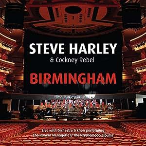 At Birmingham Symphony Hall [Import anglais]