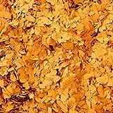 Bodenbeschichtung Farbchips small plates orange3 grob 1kg