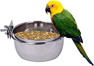 Pets Empire Stainless Steel Birds Coop Cup Feeder Bowl with Clamp Holder 1 Piece 300 ML