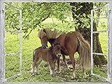 Artland Qualitätsbilder I Wandtattoo Wandsticker Wandaufkleber 120 x 90 cm Tiere Haustiere Pferd Collage Grün C0AJ Fensterblick Pony mit Kind