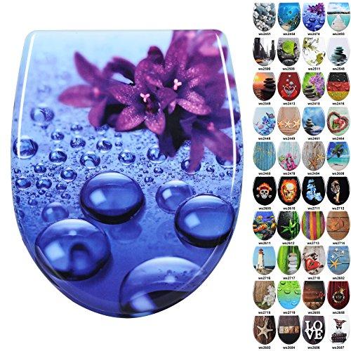 Preisvergleich Produktbild WOLTU 2474-1 Toilettensitz Toilettendeckel Wc Sitz mit Absenkautomatik, Duroplast, Fast Fix/Schnellbefestigung, Softclose Scharnier, Antibakteriell, Violett