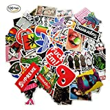 #8: 100 Pieces Waterproof Vinyl Stickers for Personalize Laptop, Car, Helmet, Skateboard, Luggage Graffiti Decals (D section)
