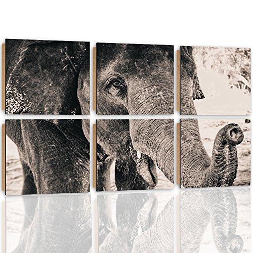 Feeby. Wandbilder - 6 Teile - Gedrucktes Bild, Foto, Kunstdrucke, Deko Panel, 6-Teilig, 60x40 cm, ELEFANT, NATUR, SCHWARZ-WEIß