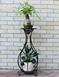 DSJ Blumenregale Eisen Balkon Boden Blumentöpfe Wohnzimmer Blumenregal Topf Grün Radieschen Fleisch Pflanze Floral Frame,AAA