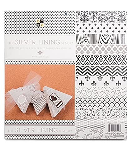 DCWV The SILVER LINING STACK 48 Sheets of 12 x