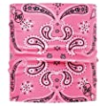 BUFF DOGS Scarf CASHMERE PINK S/M