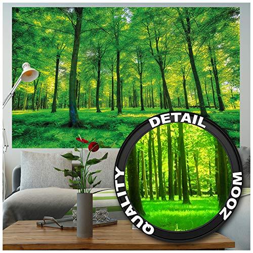GREAT ART Mural De Pared - Bosque De Verano - Abedules Glade Naturaleza Paisaje Relajación Sol Planta Flora Helechos Rama Forest Tree Foto Papel Tapiz Y Decoración 210 x 140 cm
