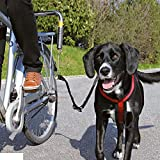 WANGADO Distanziatore con supporto e guinzaglio dotati di bande riflettenti, per pedalate sicure al fianco del proprio cane. Struttura stabile. Adatto anche per cani grandi e pesanti