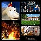 Viaggio Luce Del Buono 4giorni all' Azimut Hotel Erding & 2biglietti d' ingresso per la Bavaria film Città - Reiseschein - amazon.it
