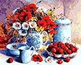 CaptainCrafts New Malen nach Zahlen 16x20 'für Erwachsene, K0inder Leinwand - Weißes Porzellan Rot Obst und Blumen (Mit Rahmen)
