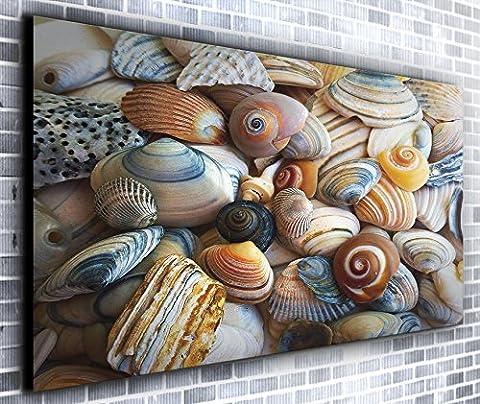 Coquillages Décor mural panoramique encadrée Impression sur toile Art mural XXL 139,7x 61cm de plus de 1,4m de large x 0,6m haute prête à suspendre Impression sur toile?Paysage Photographie?Art moderne