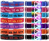 TagME Personalisiert Leuchthalsband für Hunde, LED Hundehalsband, Bestickter Hundehalsband mit Name und Telefonnummer,Wasserdichte Schnalle mit Blitzlicht,Reflektierende Nähte