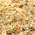 Tidymix Parrot Diet - 3Kg - High Quality Seed Blend by Tidymix