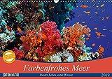 Farbenfrohes Meer (Wandkalender 2019 DIN A3 quer): Buntes Leben unter Wasser (Monatskalender, 14 Seiten ) (CALVENDO Natur)