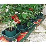 Selections GF9810 - Confezione da 3 vasi per sacchi da coltura