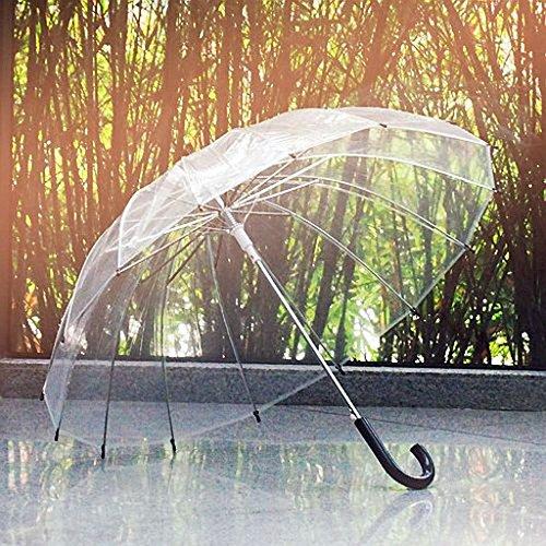 WEI 16 Knochen Regenschirm Retro transparenter Regenschirm Langer Griff transparenter Regenschirm kreativer Regenschirm,Schwarz,Gekrümmte Stange (Dusche Stange Gekrümmte)