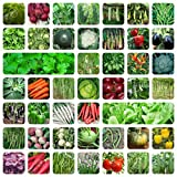 OFO ONLY FOR ORGANIC 45 Variety of Vegetable Seeds with Instruction Manual