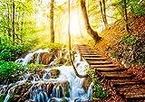 Wasserfall Wald Poster XXL, Kunstdruck - 118,8 x 84 cm, traumhafter Weg über einen Wasserfall in einem von Sonne durchfluteten, zauberhaftem, heimischen Wald | Wandposter, Fotoposter, Wandgestaltung, Hochauflösende Wanddekoration von ARTBAY