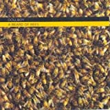 Bread Cd - Best Reviews Guide