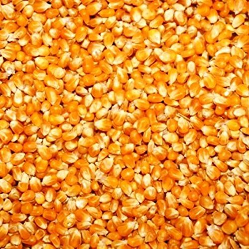 25 kg CRIBBS maïs