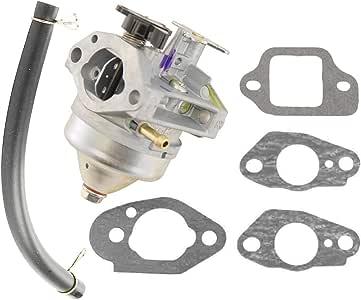 BB65A B 2 Hippotech Vergaser und Dichtungssatz f/ür Honda 16100-Z0L-862 16221-883-800 16212-ZL8-000 16228-ZL8-000
