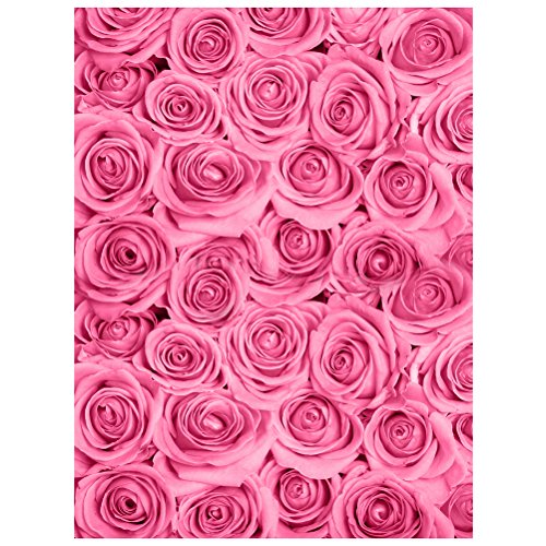 9a154782bc LEDMOMO Photographie Décors 100 x 150 cm Fleur Rose Photo Studio Fond Tissu  Décoration