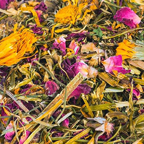 petifool Nager-Ergänzungsfutter Wilde Blumenwiese, natürliches und gesundes Kaninchenfutter, 1er Pack (1 x 600 g) - 2