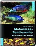 Malawisee-Buntbarsche, Teil 1: Erfolgreiche Pflege und Zucht - Andreas Spreinat