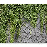 murando - Fototapete 400x280 cm - Vlies Tapete - Moderne Wanddeko - Design Tapete - Wandtapete - Wand Dekoration - Steine Mauer Efeu b-A-0173-a-b