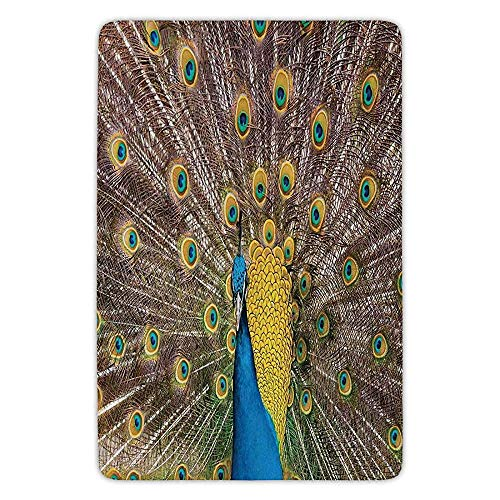 Bathroom Bath Rug Kitchen Floor Mat Carpet,Peacock Decor,Peacock Displaying Feathers Golden Vibrant Colors Eye Shaped Patterns Picture,Flannel Microfiber Non-Slip Soft Absorbent (Feathers Peacock Displaying)