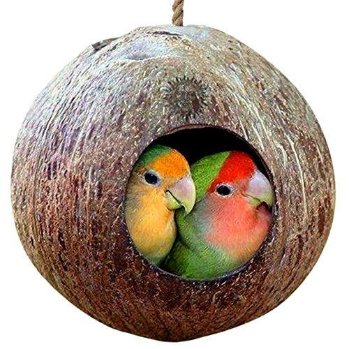 Sungrow Bird House: 100% naturel Coquille de noix de coco: Maison de nidification ou Mangeoire à oiseaux: matériaux durables: Naturel Textures encourager Pied et bec d'exercice: Inclut un anneau de suspension