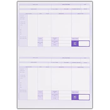 Compatible A4 Payslip for Iris Payemaster Payroll 1000