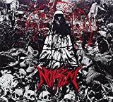 Songtexte von Noisem - Agony Defined