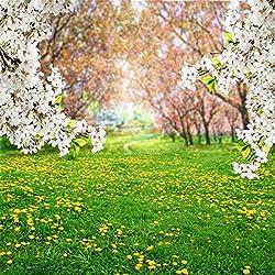 YongFoto 2,5x2,5m Fondos Fotograficos Primavera Paisaje Césped Verde Árbol Flor Blanca Prado Margarita Verano Naturaleza Fondos para Fotografia Fiesta Boda Retrato Estudio Fotográfico Accesorios